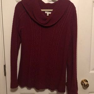EUC Cowl Neck Sweater